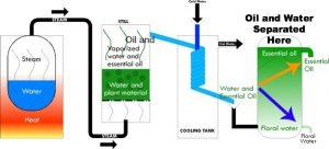 steamdistillation1