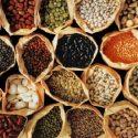 Dietary fiber – what's in it?