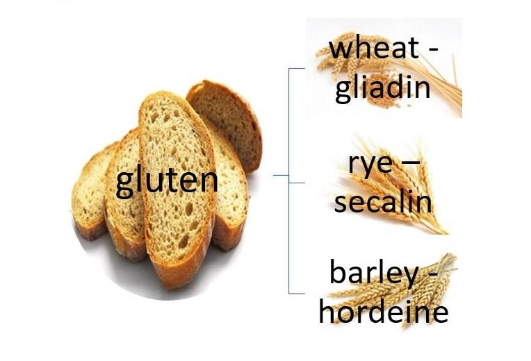 gluten free diets toxic
